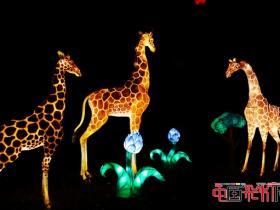 """2016年第二十二届自贡国际恐龙灯会十大""""我最喜爱的灯组""""出炉"""