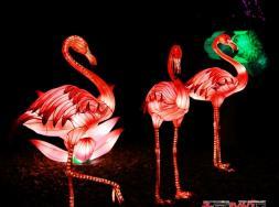 第二十三届自贡国际恐龙灯会招商方案